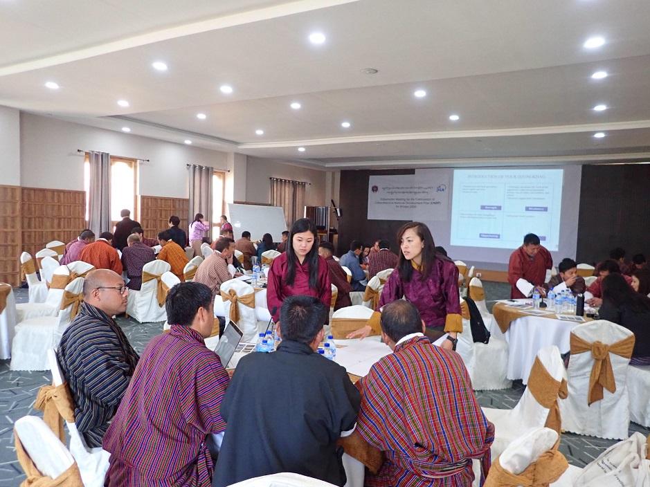 ブータン国全国総合開発計画2030策定プロジェクト