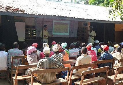 シエラレオネ国稲作振興支援にかかる一連のプロジェクト(2006年~)