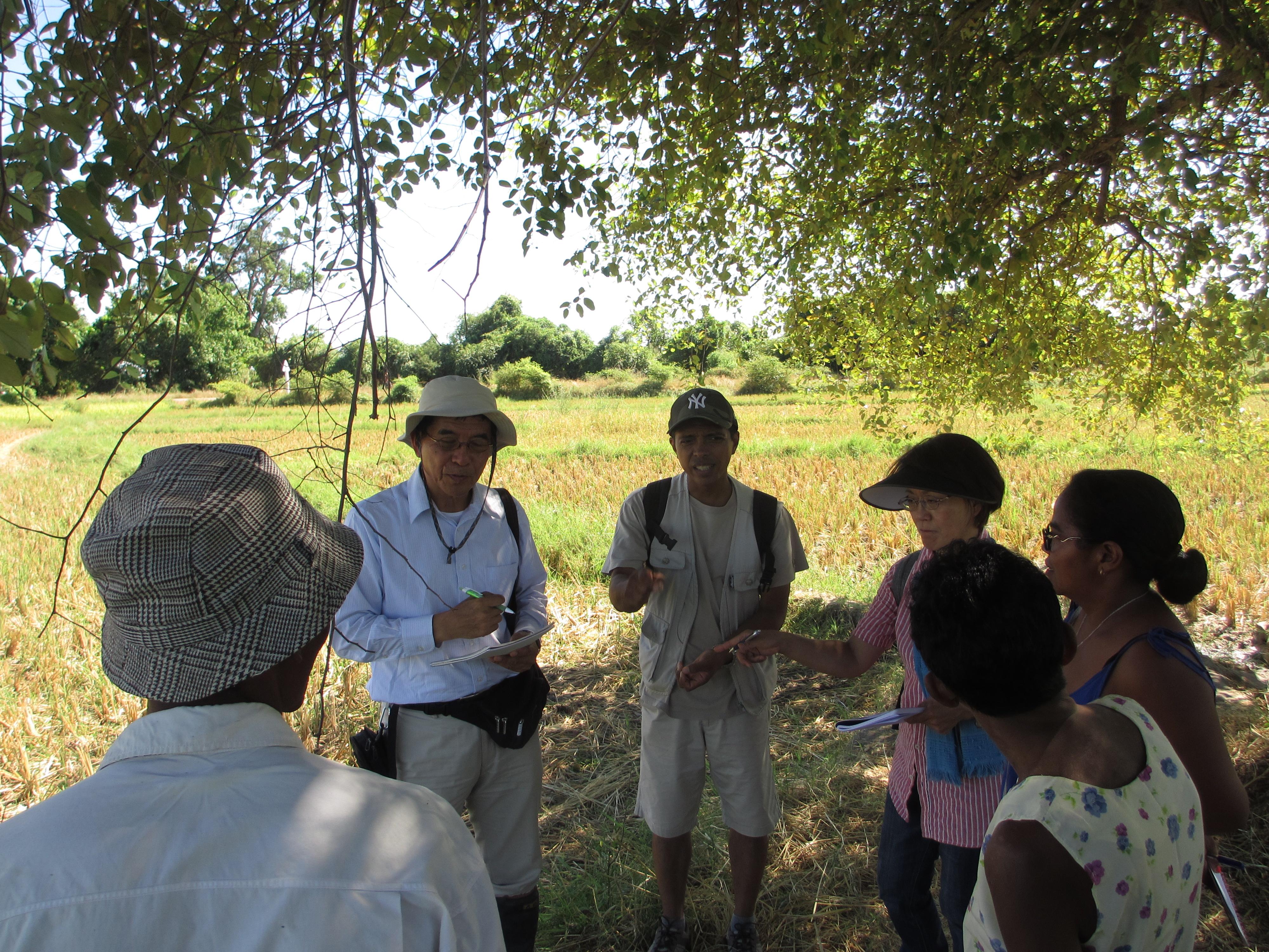 PAPRiz技術実践農家に対する聞き取り風景